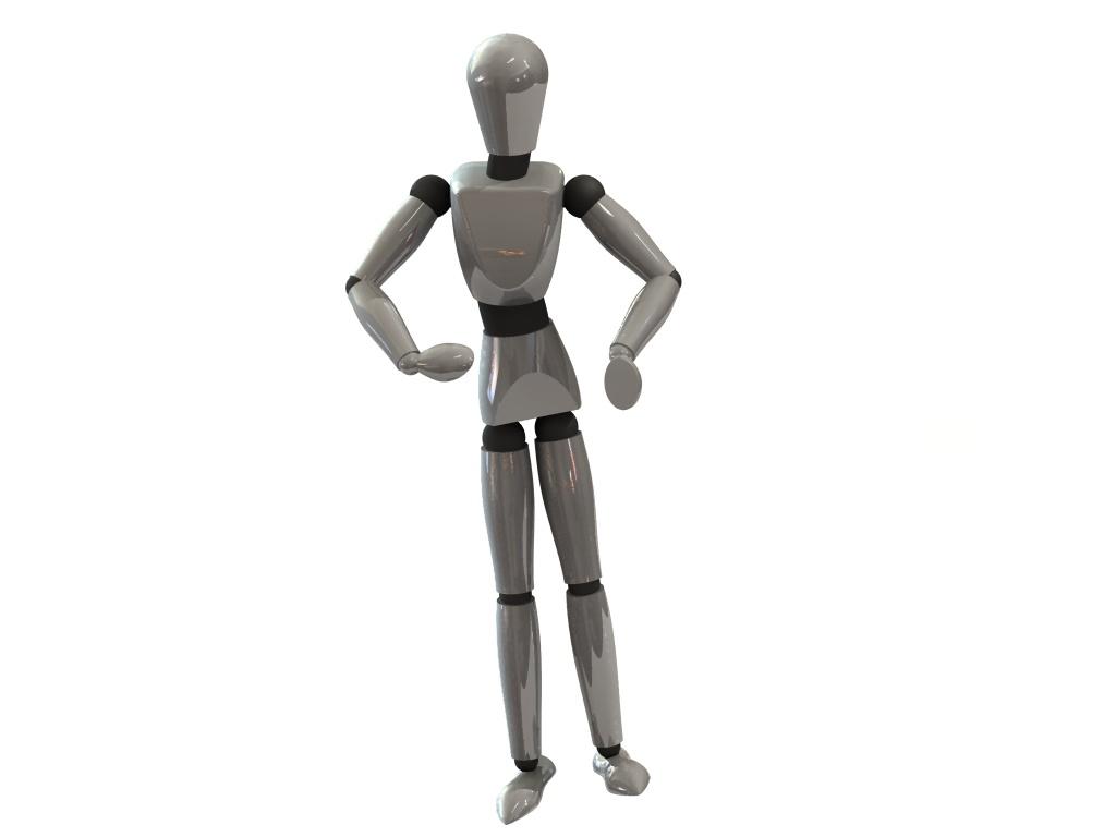 3D2_bot2.jpg